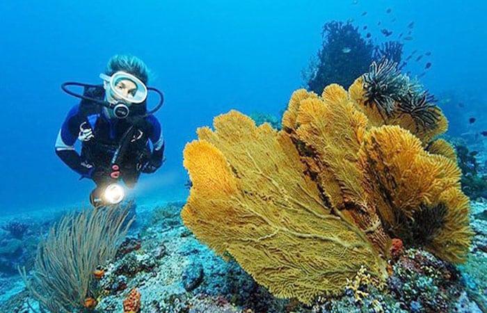 Pesona Pulau Bidadari Labuan Bajo, Cantiknya Bak Bidadari yang Memikat Hati