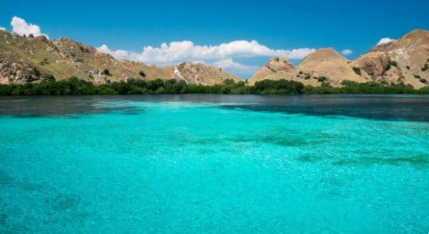 Mau Snorkeling Bareng Penyu, Yuk Kunjungi Pulau Siaba Labuan Bajo