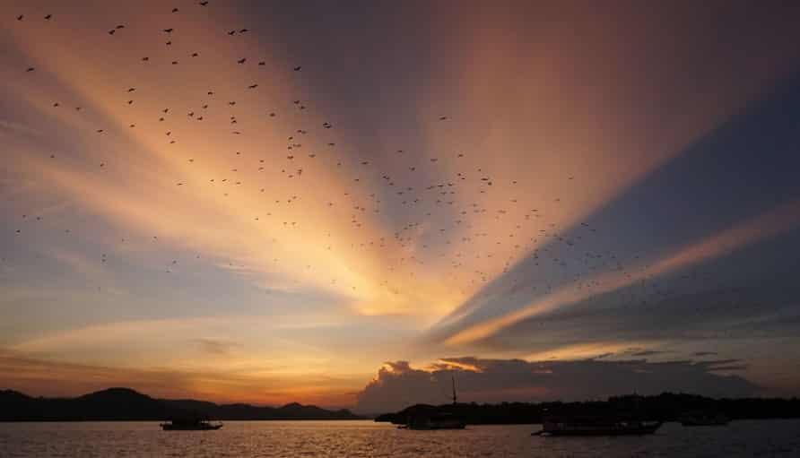 Paket Wisata Tour Labuan Bajo 2 Hari 1 Malam Oktober